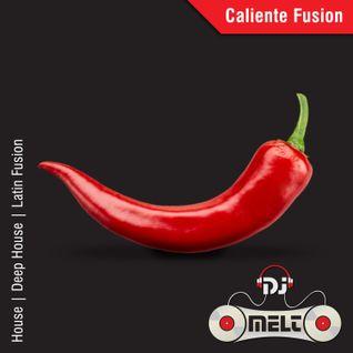 DJ Melt - Caliente Fusion