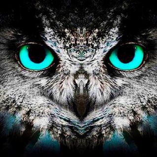 Owl Radio ( Rhythmical Remedy )