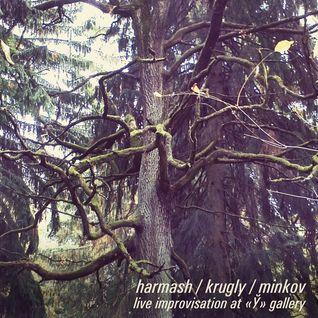 Harmash, Krugly, Minkov - live improvisation at «Y» gallery [FNET011]