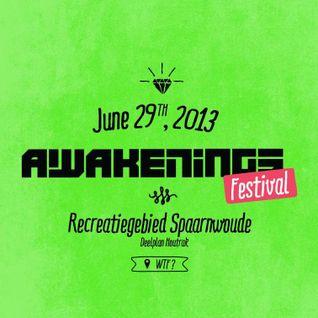 Reeko & Oscar Mulero @ Awakenings Festival 2013 at Spaarnwoude 29-06-2013