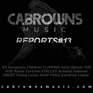 CABROWNS REPORTS#13