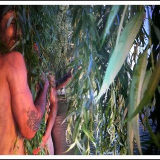 """Nudist Sunset With Visionary Ghosts"" mixtape by Pablo Zuleta Zahr"