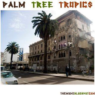 palm tree tropics