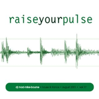 Raise your pulse! Vol 17 -2001