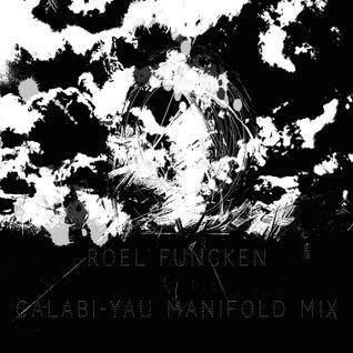 Roel Funcken_Calabi-Yau manifold mix