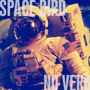 SpaceBirdNoVerb