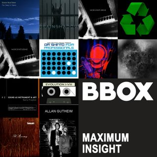 Maximum Insight #1608: The Sublunar Society Record Label