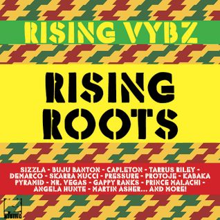 RISING VYBZ - RISING ROOTS MIXTAPE 2015