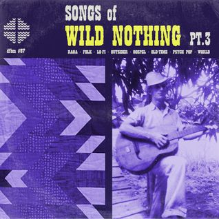 dfbm #87 - Songs of Wild Nothing Pt. III