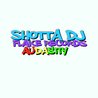 SHOTTA DJ - AUDASITY - FLAKE RECORDS - DRUM N BASS - 103