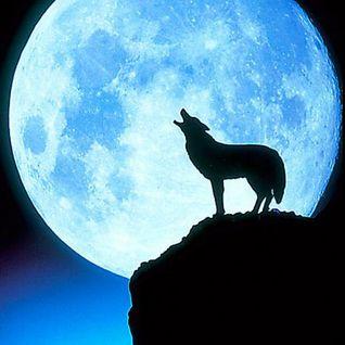 Lone Wolf rant N rave on Eye On Citrus Radio Sunday Aug 12, 2012