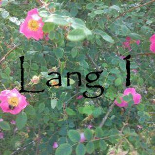 Lang 1
