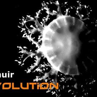 evolution (b24 015)