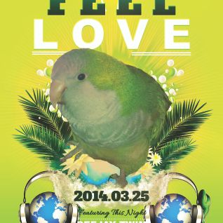 Deejay TWIM / 2014.03.25 / Session Mix - Feel Love