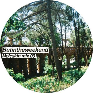 Butintheweekend Moleskin mix 001