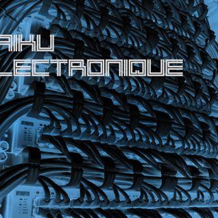 Mike Stern - Haïku Electronique