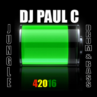 Jungle 42016 Paul C