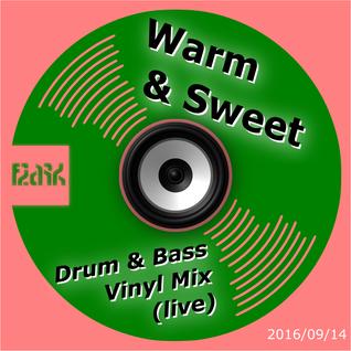 Warm & Sweet Drum & Bass (Vinyl Mix)