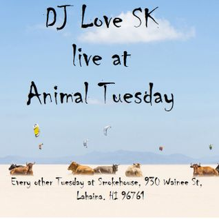 DJ Love SK live at Animal Tuesday