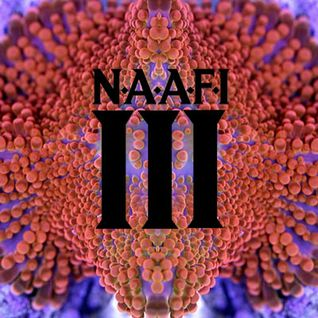 PAUL MARMOTA FT. D.B. LIVE SET @ N.A.A.F.I #3