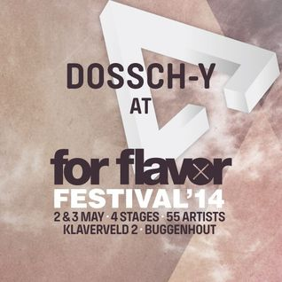 DosschY @ For Flavor Festival 2014