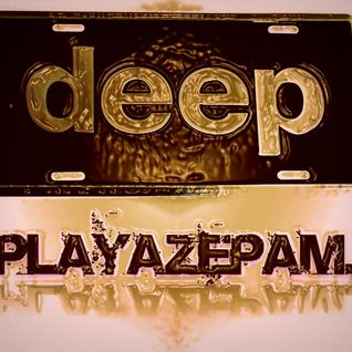 Playazepam - Autonomic 2014