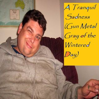 A Tranquil Sadness (Gun Metal Gray of the Wintered Day)