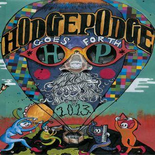 Live @ Hodgepodge Festival 2013