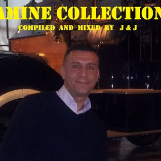 AMINE COLLECTION