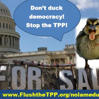 TPP Resistance Call September 21, 2016