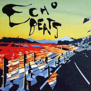 ECHO BEATS.DJ ERAZE