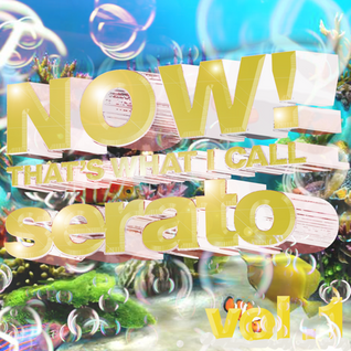 Now That's What I Call Serato vol.1