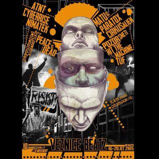 Dr. Marius b2b Nebula @ VEZNICE BEATZ (CZ) - Saturday Night Acid Vibe - 18/07/2015