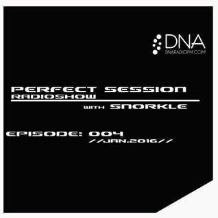 Perfect Session with Snorkle on DNA Radio Fm | episode: 004 | jan.2016