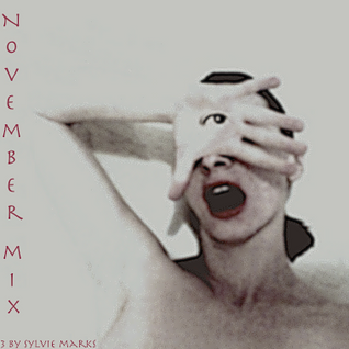 November Mix 2013  by Sylvie Marks