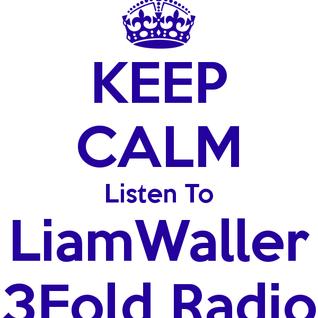 3Fold Radio 20130225 Liam Waller