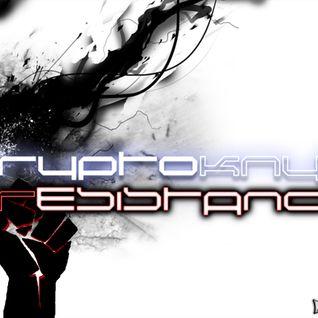 cryptoKNYT - Resistance (Original Mix)
