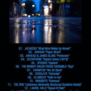 Steve D - After The Rain (24/04/2012)