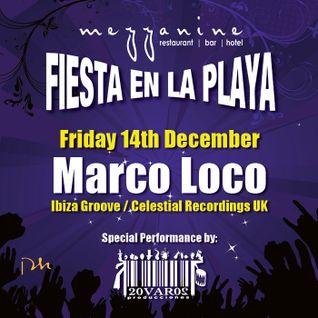 Marco Loco at Fiesta en la Playa @ Mezzanine, Tulum - 14.12.12