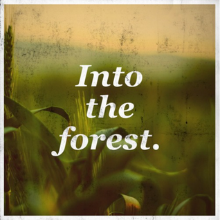2015.06.23 Seba Lecompte @ Into The Forest 2015