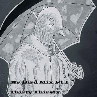#78: Rain, Rain, Go Away (mixed by Mr Bird)