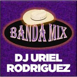 Banda & Corridos Mix 2014 Uriel Rodriguez