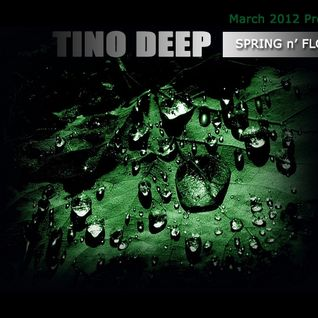 Tino Deep - Spring n` Flow [March 2012 Promo Mix]
