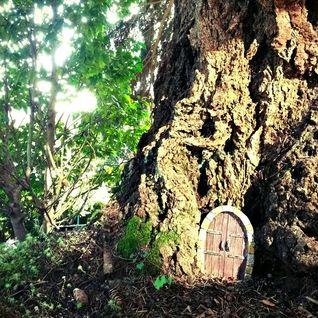 Basshavior - Tree Homes