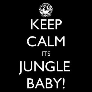 Old vs New Jungle Mix 5.10.10