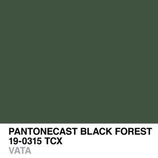 PANTONECAST BLACK FOREST 19-0315 TCX