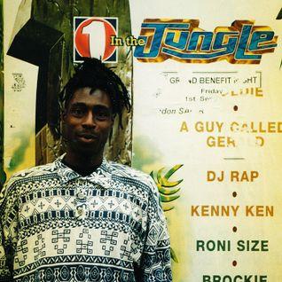 Alex Reece w/ MC Navigator - BBC Radio One in the Jungle - 19.7.96