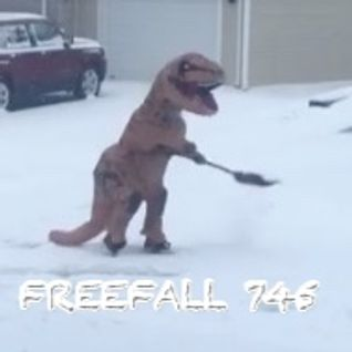 FreeFall 745