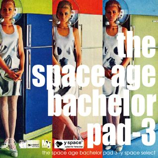 the space age bachelor pad 3