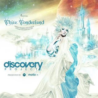 Discovery Project: White Wonderland 2013 [DJ MILOK]